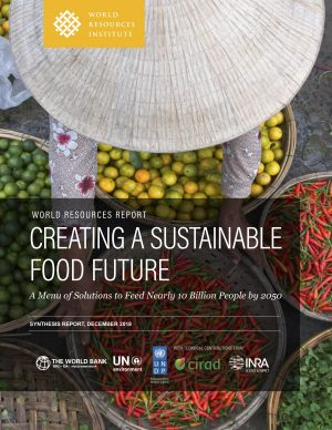 Creating a World Sustainable Food Future
